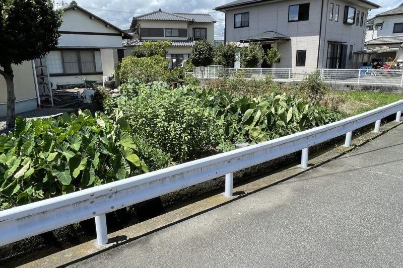 川成島売土地